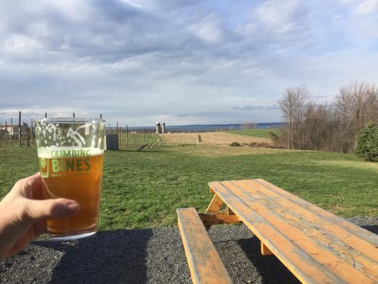 Finger Lakes Vacation Rentals Microbreweries By Smarter